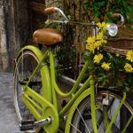 Retro damecykel med kurv – Til studie, arbejde og fritid