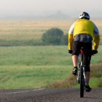 Mountainbikedæk til landevej og asfalt