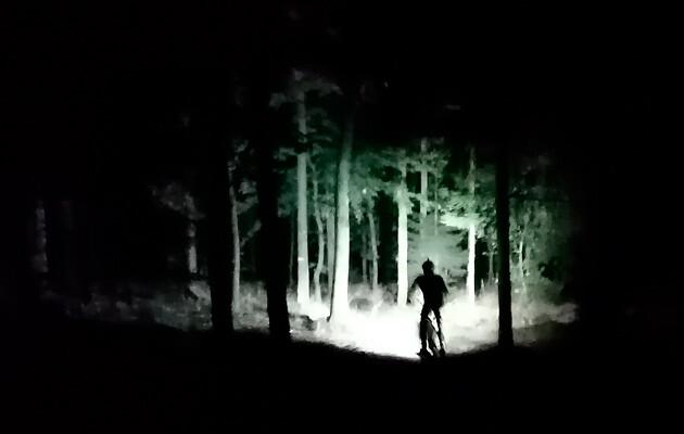 Billede af cykelrytter som cykler mtb i en mørk skov